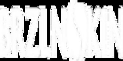 BRZLNSKIN LLC promo codes
