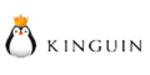 Kinguin promo codes