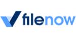 Filenow promo codes