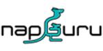 NapGuru promo codes