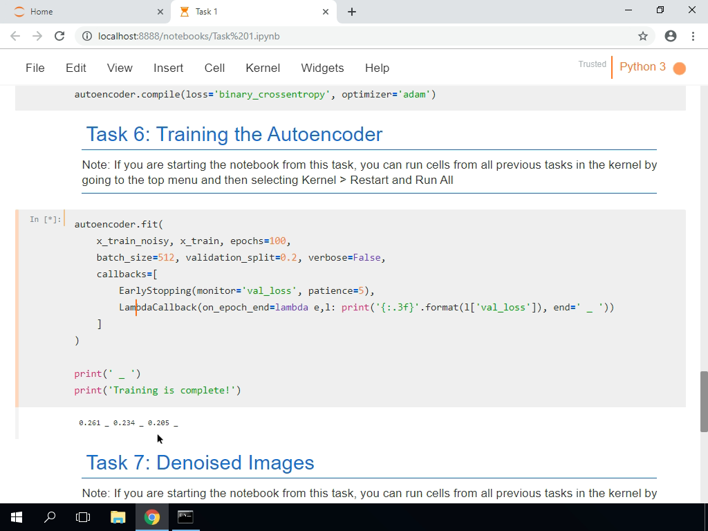 Training the Autoencoder