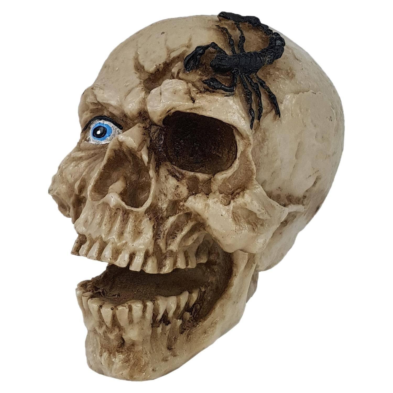 Crânio Caveira Escorpião Decorativo Resina