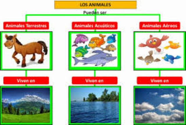 ¿Cómo se clasifican los animales según su hábitat?
