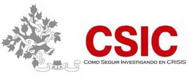 C S I C