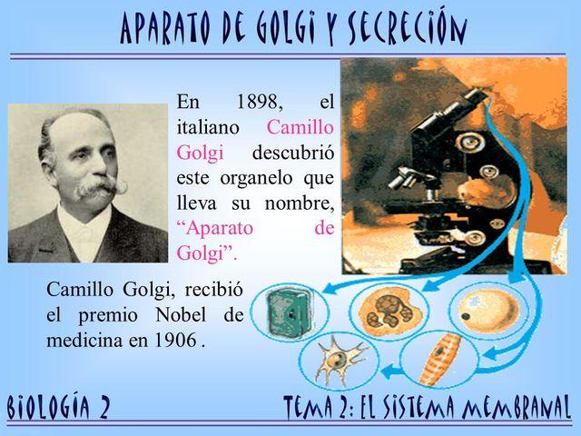 """Camilo Golgi """"La técnica de impregnación argéntica de Golgi."""" (Scielo -Orlando Torres fernández 2006)"""