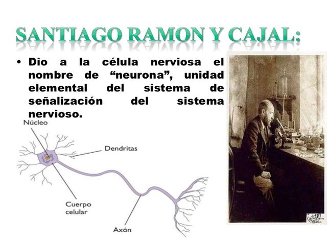 Santiago Ramón y Cajal, neurocientífico y pintor (scielo 2015 - Leonardo Palacios Sánchez)