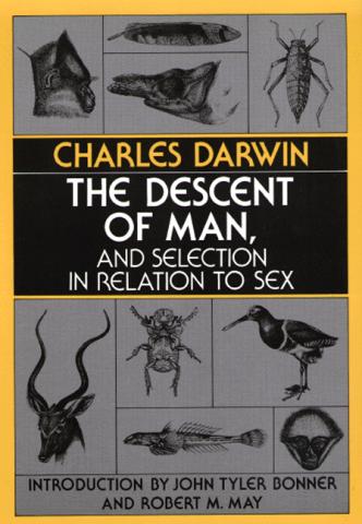 The Descent of Man (El origen del hombre)