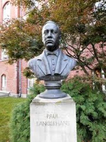 Paul Langerhans (1847-1888)