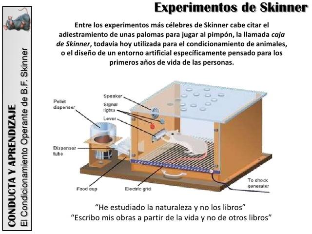 El acondicionamiento operante de Skinner