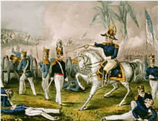 May 8-9 1846 Battles of Palo Alto and Resaca De La Palma
