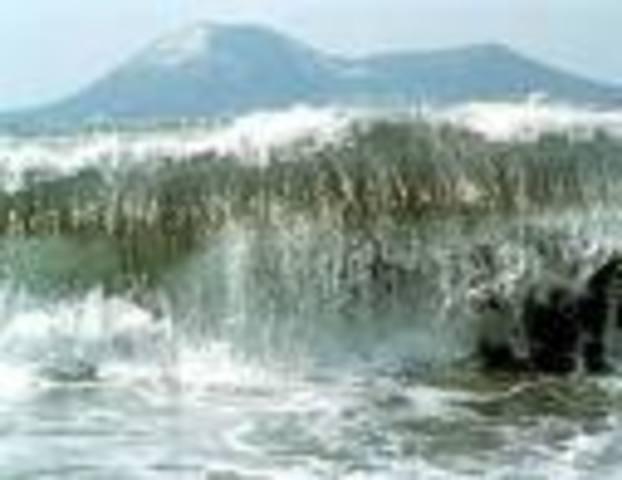 Eartquake hits Japan causing tsunami