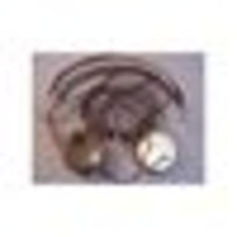 Ridio Headphones