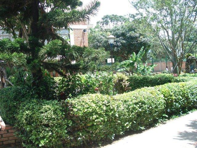 Colegio 2001