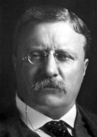 Thoedore Roosevelt