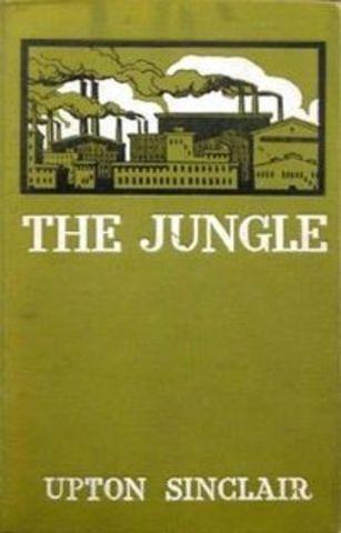 'The Jungle'