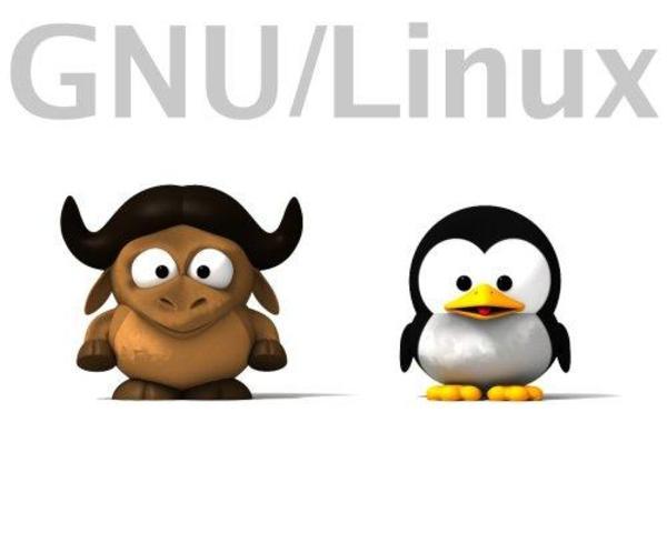 INTEGRACION DE LINUX Y GNU