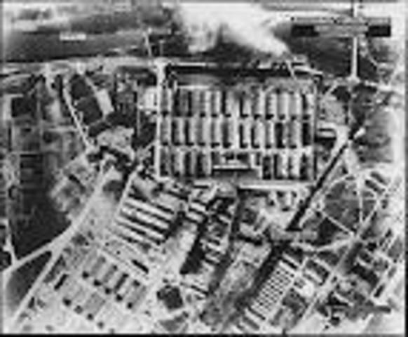 Auschwitz Terror