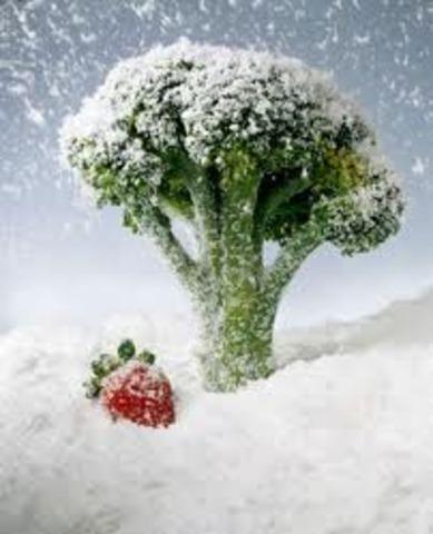 La congelación rápida de alimentos
