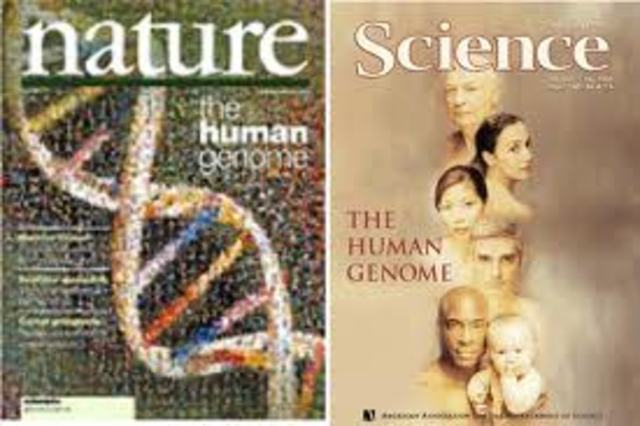 Se pública el primer borrador de la secuencia del genoma humano