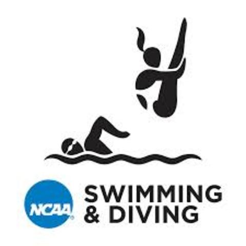 Swimming became an NCAA Sport