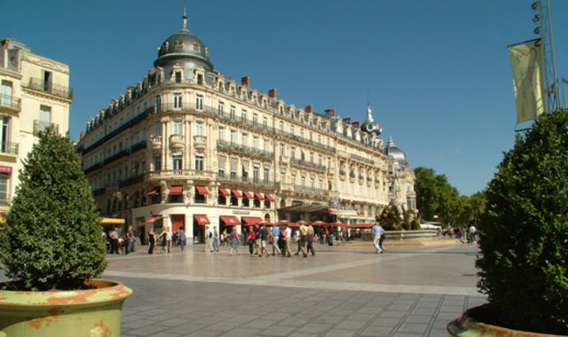 Hides in Montpelier France