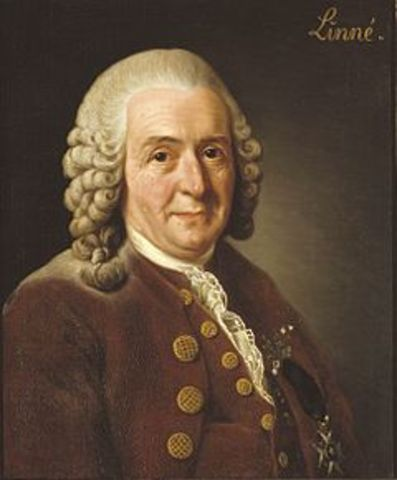 Carl Linnaeus (1707-1778)