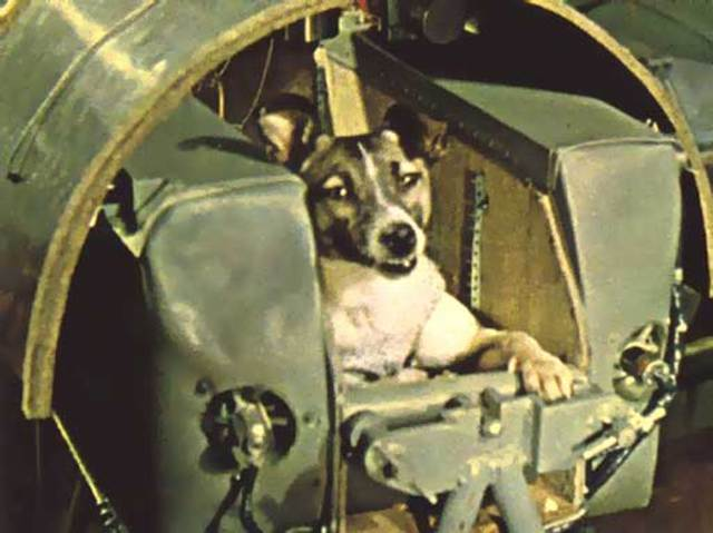 November 3, 1957: First Animal in Orbit