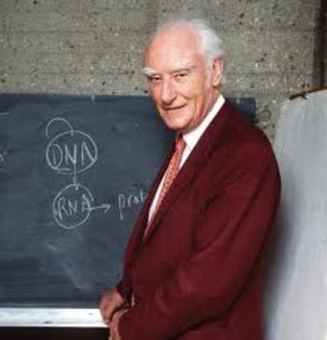 Francis Harry Compton Crick