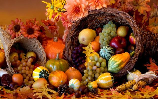 First Thanksgiving Celebration
