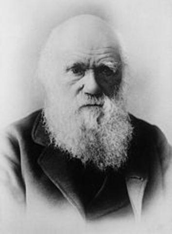 Teoria de la evolucion de Darwin