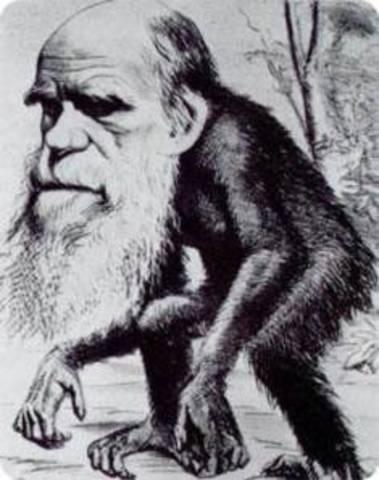 La evolución humana (Darwin)
