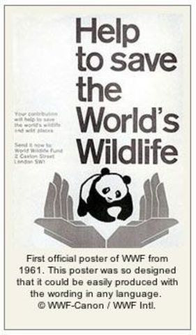 WWF raised over US$5.6 million in the 1960s