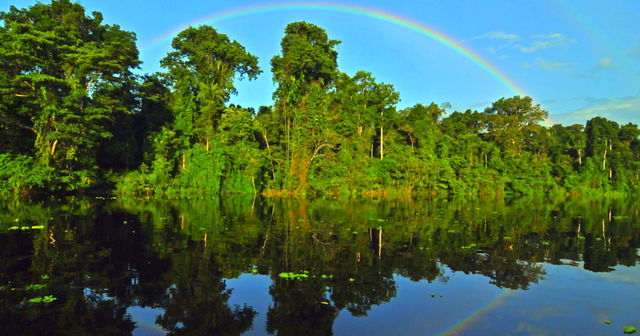 Large-scale initiative to save the Amazon
