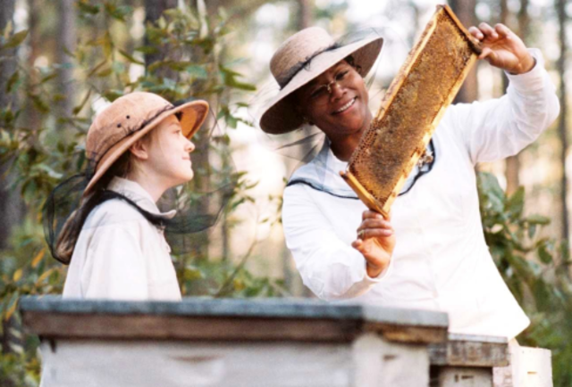 Lily becomes a true beekeeper