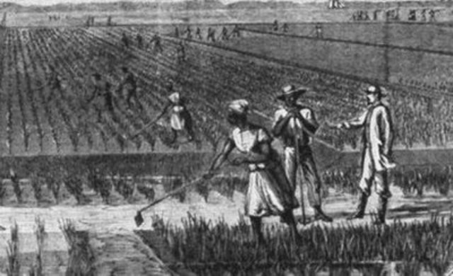 1867 Agricultural Gangs Act