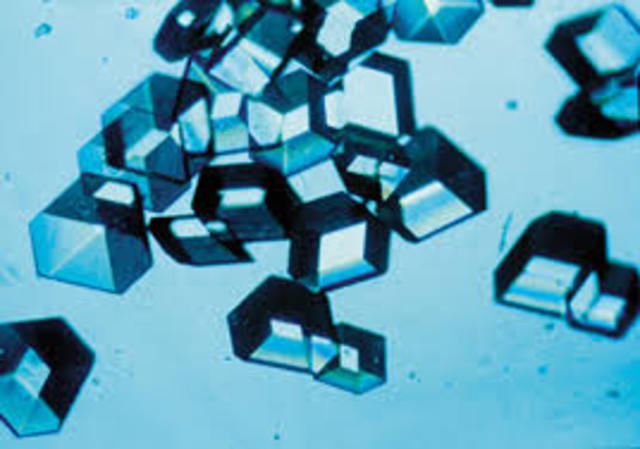 Crystallized Insulin