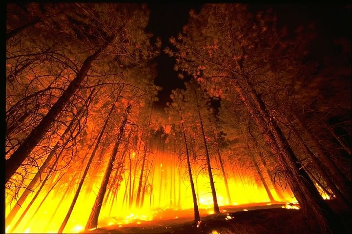 It's almost here . . . Wildfire Season. What challenges do you face?