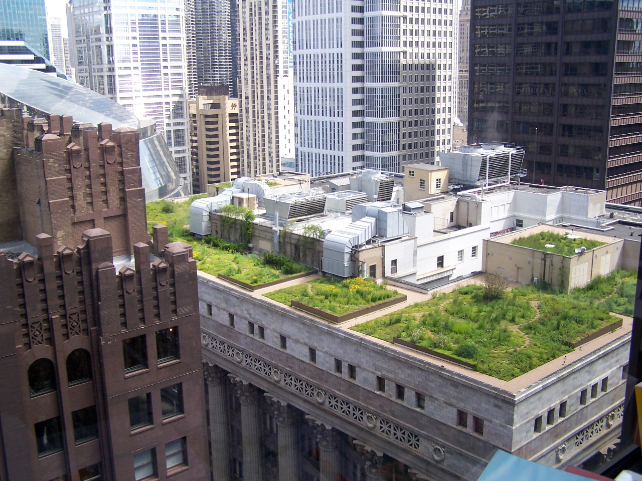 Green roof installation on Chicago City Hall. Green roofs collect and retain storm runoff keeping it from entering combined sewer systems.
