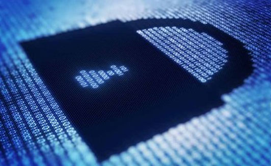 cyber trust