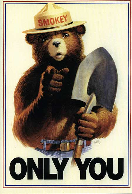 Only you can prevent rogue IoT devices