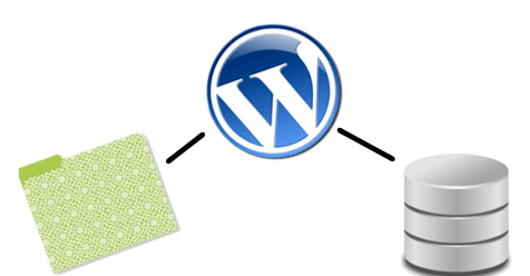Anatomy of WordPress