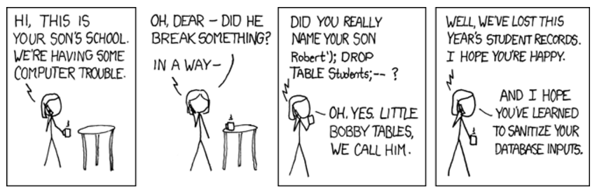 Little Bobby Tables cartoon