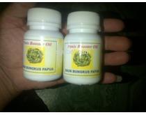 Daun Bungkus Oil Cs 085327336331