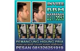 Obat Pemancung Hidung Paling Manjur Nose gold cream super Platinum