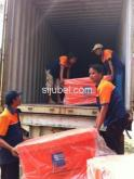 Jasa Kargo International Import & Domestik Antar Pulau Door to Door Service