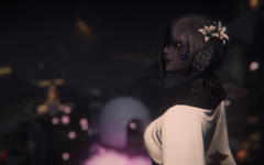 ffxiv_dx11 2019-01-15 17-33-24.png