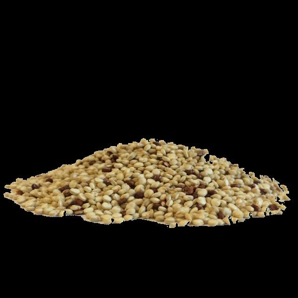 Quinoa aux 2 saveurs Bio