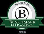Benchmark Litigation Futurestar 2019