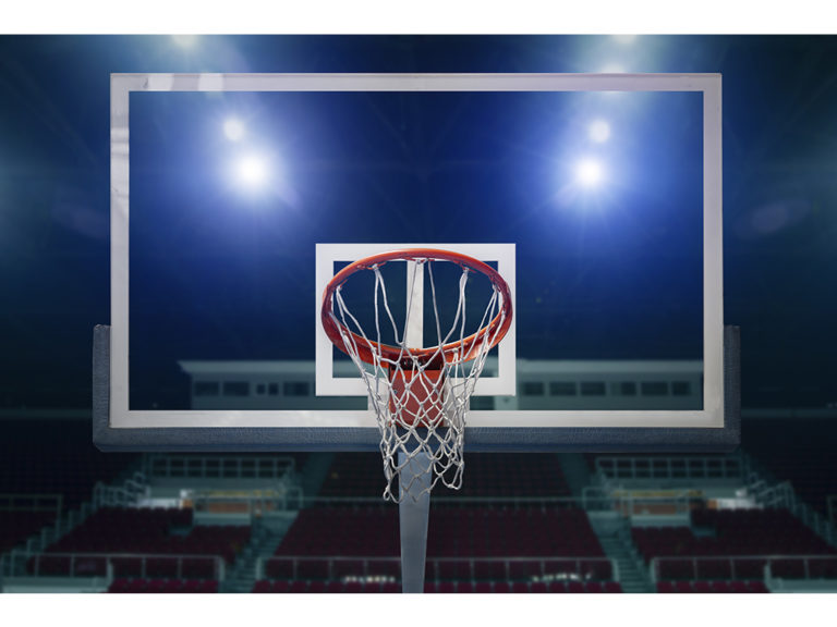Basketball Goal COLOR website