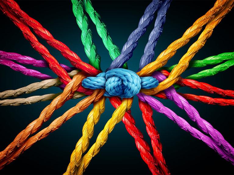 Holding Together Knot Website